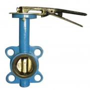 Затвор дисковый поворотный Ду-65 (диск чугун)